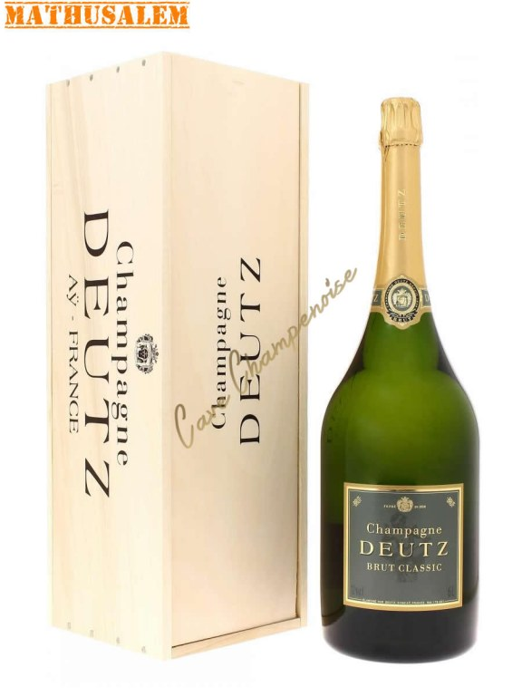 champagner magnum preis